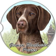 Absorbent Car Coaster - German Short Hair Pointer