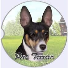 Absorbent Car Coaster - Rat Terrier
