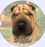Absorbent Car Coaster - SharPei