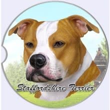 Absorbent Car Coaster - Staffordshire Terrier