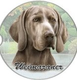 Absorbent Car Coaster - Weimaraner