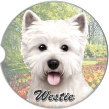 Absorbent Car Coaster - Westie