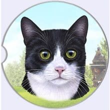 Absorbent Car Coaster - Black & White Cat