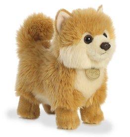Miyoni Pom Puppy -Small