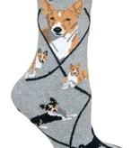 Basenji Socks