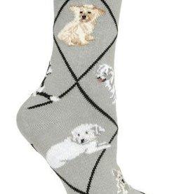 Yorkie-Poo Socks