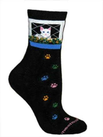 Cat in Window Socks
