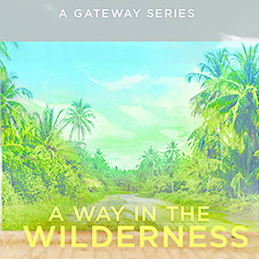 Way in the Wilderness Series DVDS