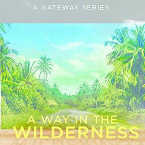 Way in the Wilderness Series CDS
