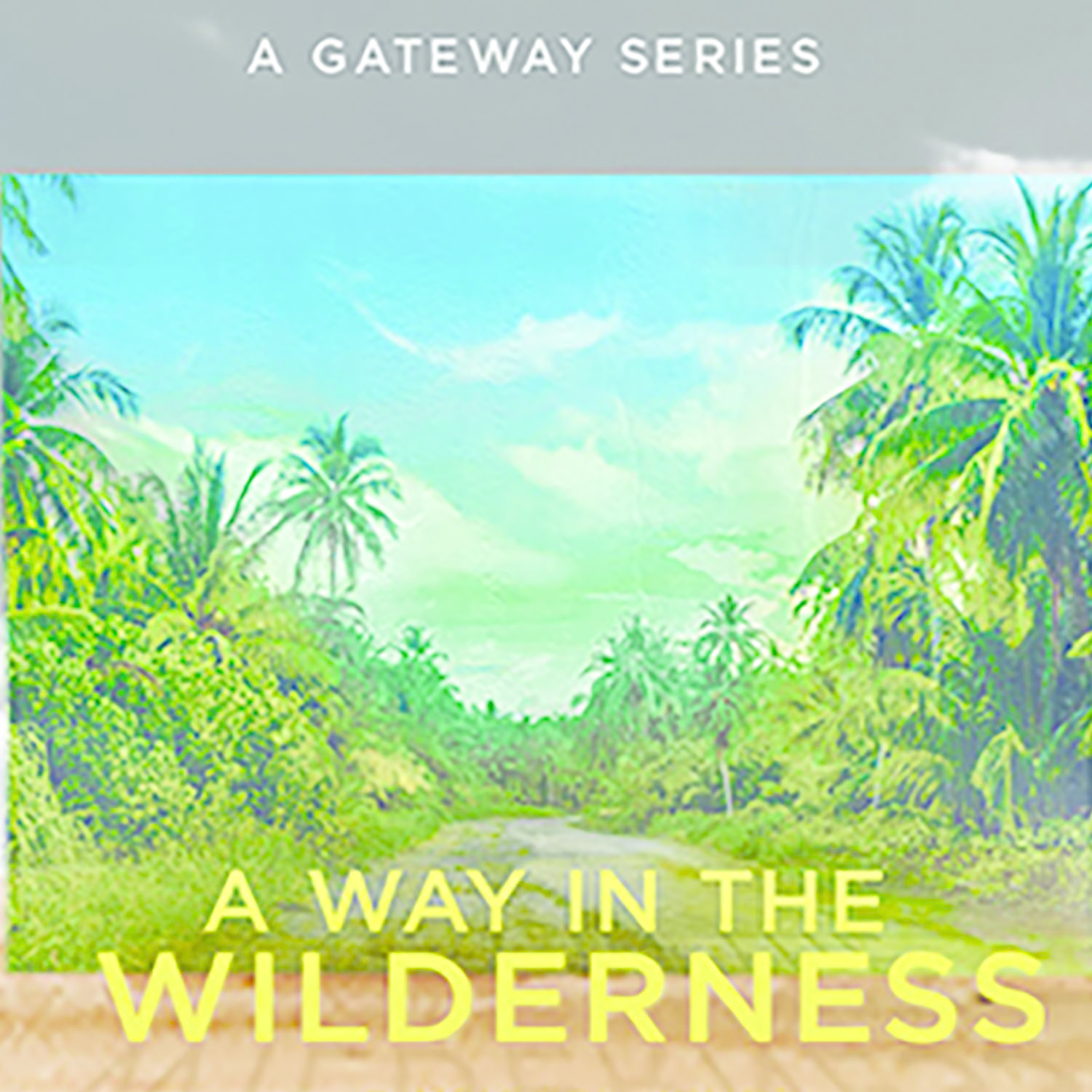 Way in the Wilderness Series CDS
