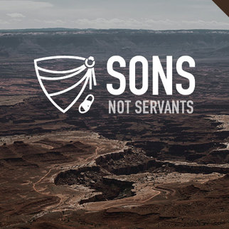 Sons not Servants Series DVDS