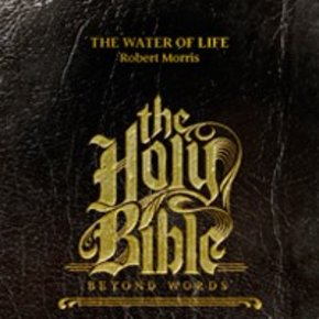 Holy Bible: Beyond Words CDS