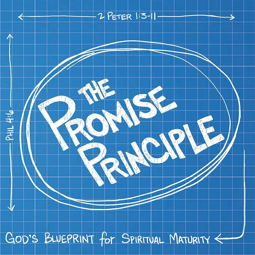 Promise Principle CDS