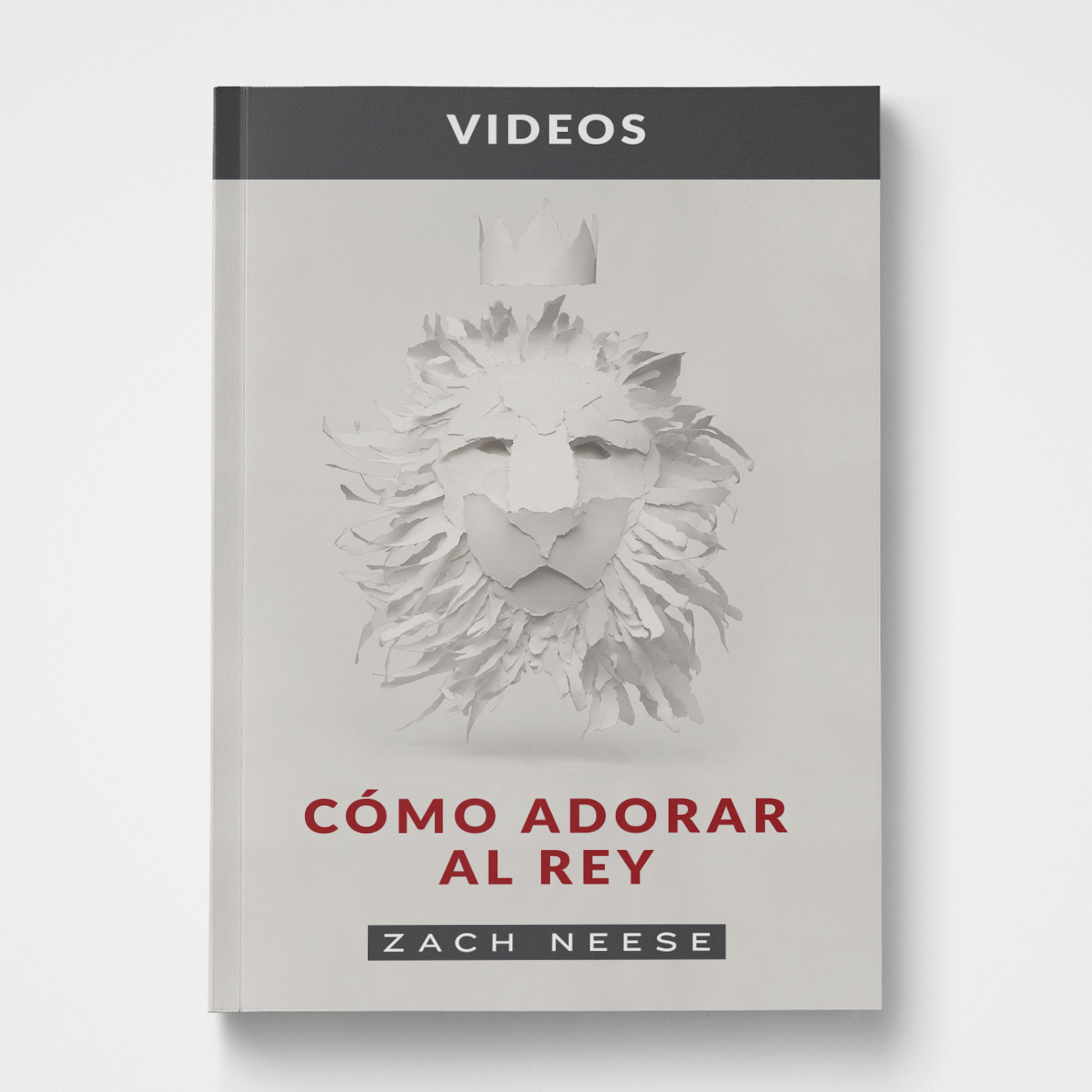 How to Worship A King DVD (SPANISH)