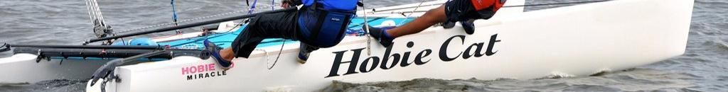 Hobie 20 Mast Rotation Control Parts