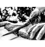 Gerber Controller 10'' Fishing Fillet Knife System