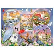 Cobble Hill Puzzles Cobble Hill Waterbird Magic Puzzle 1000pcs