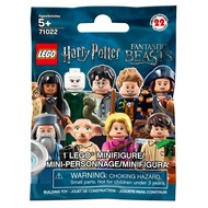 LEGO® LEGO® Harry Potter and Fantastic Beasts Minifigures RETIRED