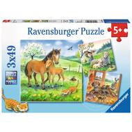 Ravensburger Ravensburger Cuddle Time Puzzle 3 x 49pcs