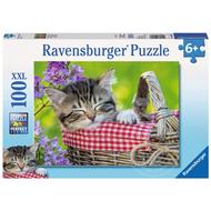 Ravensburger Ravensburger Sleeping Kitten Puzzle 100pcs XXL