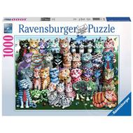 Ravensburger Ravensburger Cat Reunion Puzzle 1000pcs