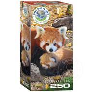 Eurographics Eurographics Save Our Planet Collection: Red Panda Puzzle 250pcs