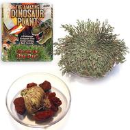 Toysmith The Amazing Dinosaur Plant