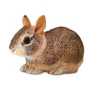 Safari Safari Eastern Cottontail Rabbit Baby