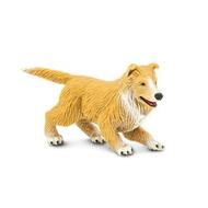 Safari Safari Collie Puppy