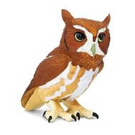 Safari Safari Eastern Screech Owl