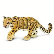 Safari Safari Clouded Leopard