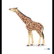 Papo Papo Giraffe Head Raised