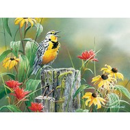 Cobble Hill Puzzles Cobble Hill Meadowlark Morning Puzzle 1000pcs