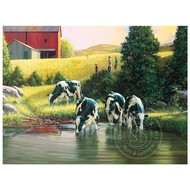 Cobble Hill Puzzles Cobble Hill Holsteins Puzzle 500pcs