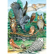 Cobble Hill Puzzles Cobble Hill North American Owls Tray Puzzle 35pcs