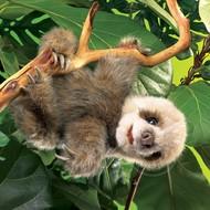 Folkmanis Folkmanis Baby Sloth Puppet