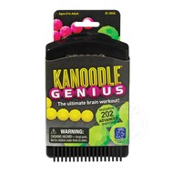 Educational Insights Kanoodle Genius