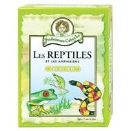 Professor Noggin's Professeure Caboche les Reptiles et les Amphibiens