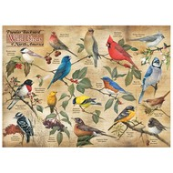 Cobble Hill Puzzles Cobble Hill Popular Backyard Wild Birds of North America Puzzle 1000pcs