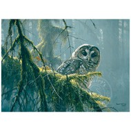 Cobble Hill Puzzles Cobble Hill Mossy Branches Spotted Owl Puzzle 500pcs