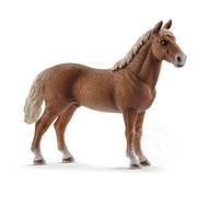 Schleich Schleich Morgan Horse Stallion