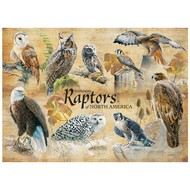 Cobble Hill Puzzles Cobble Hill Common Raptors Puzzle 1000pcs