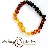 """Healing Amber Healing Amber 5.5"""" Bracelet Circle Clasp"""