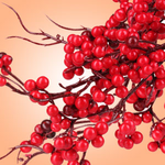 Fragrant Scent Twigs and Berries - Large