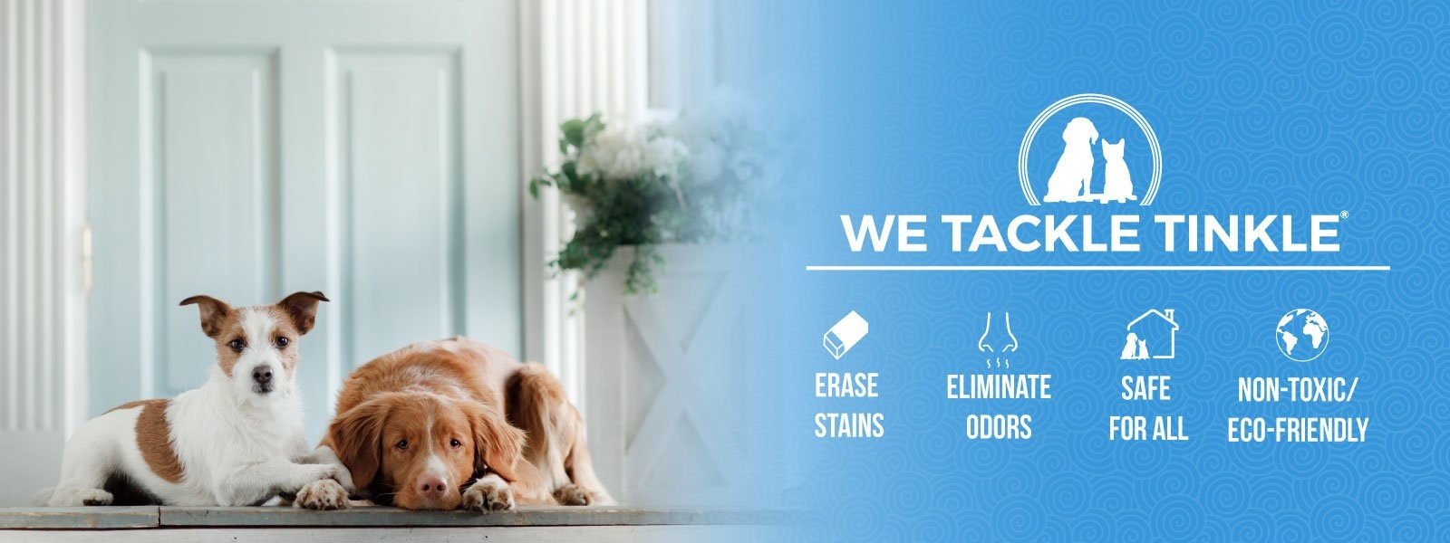 Pet Stain & Odor Specialists