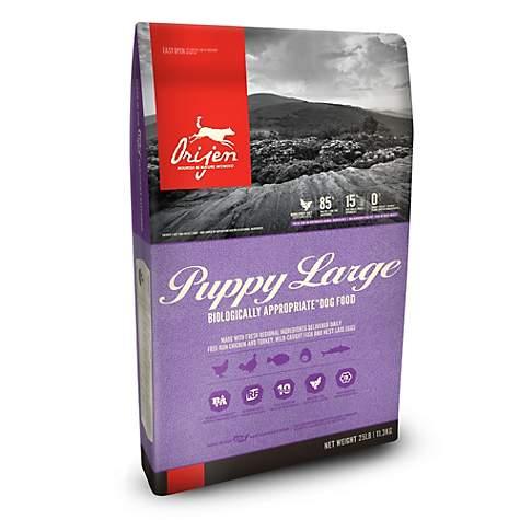 Orijen Puppy Large Breed GF Dog Food