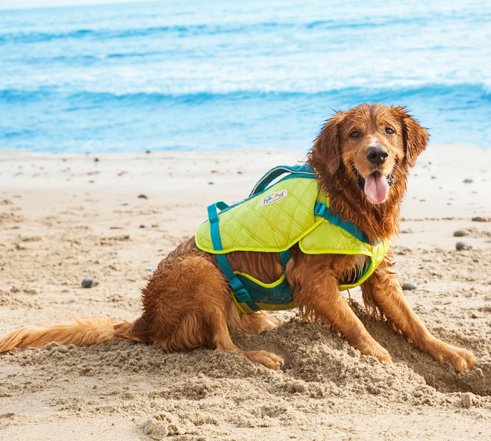 OUTWARD HOUND Standley Sport Life Jacket for Dogs