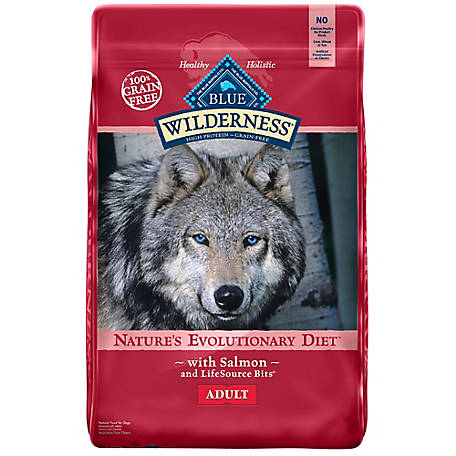 Blue Buffalo Wilderness Salmon GF Dog Food