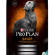 NESTLE PURINA PETCARE Savor Lamb & Rice Dog Food