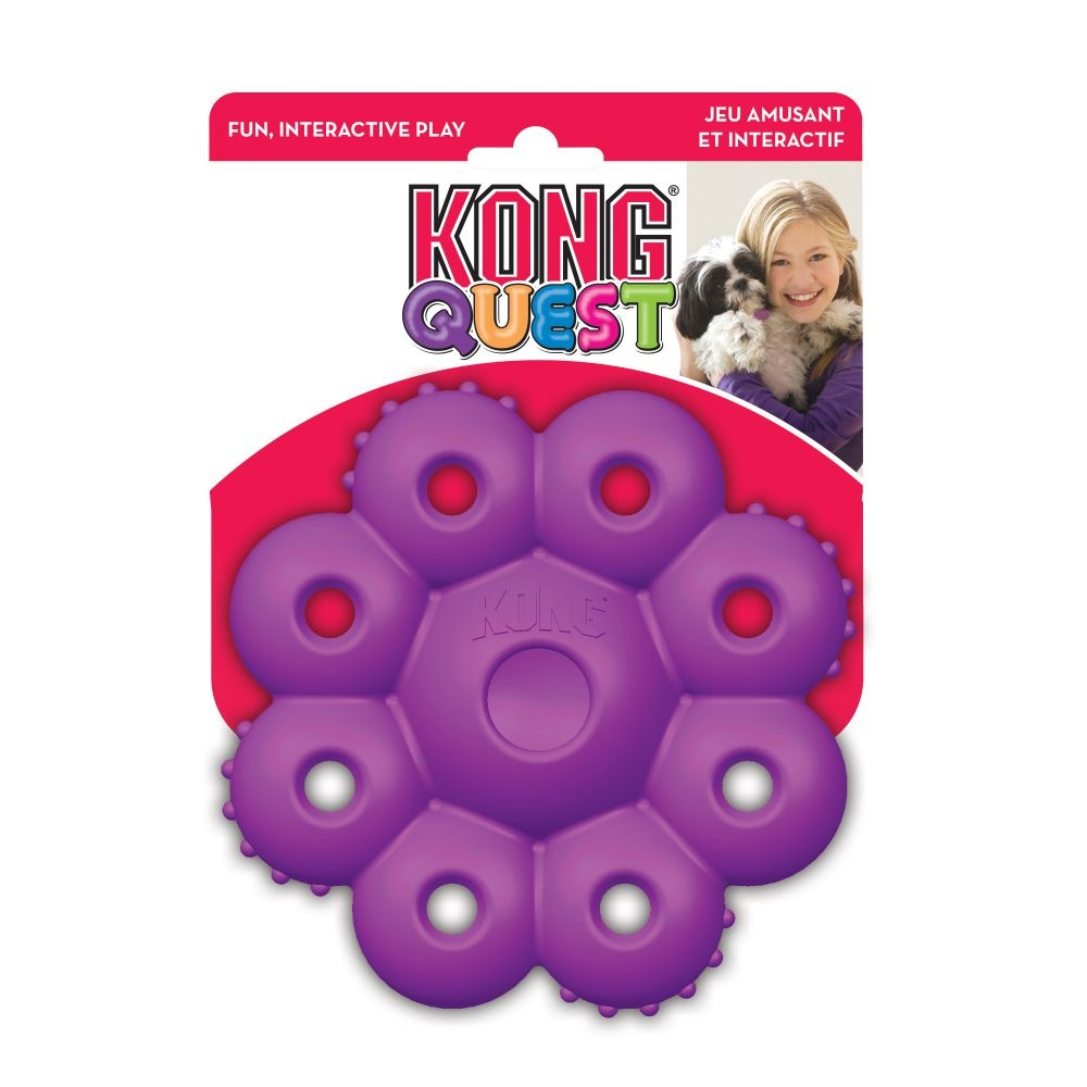 KONG QUEST STAR PODS SML          24